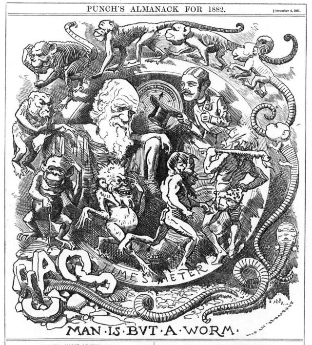 Карикатура «Человек всего лишь червь», 1882 год