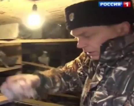 В Луганской области погибли трое волонтеров из России